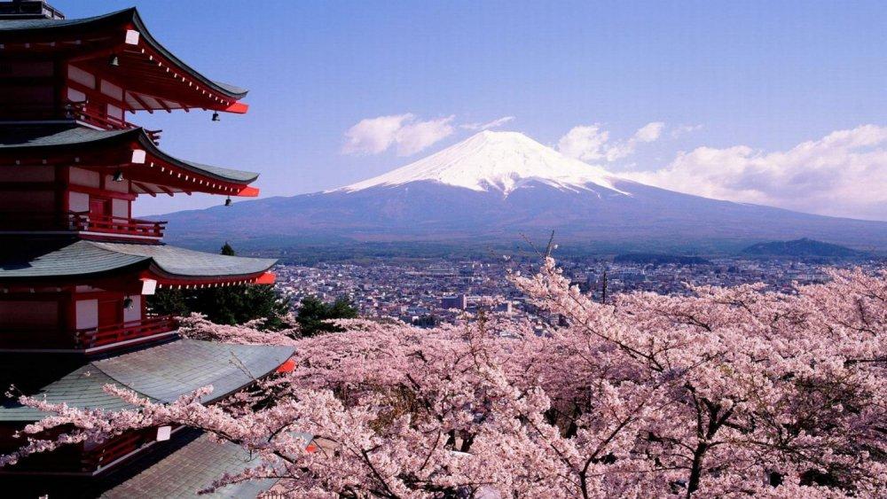 ТЭТГЭЛЭГТ ХӨТӨЛБӨР: Япон улсын Засгийн газрын тэтгэлэгт хөтөлбөр зарлагдлаа