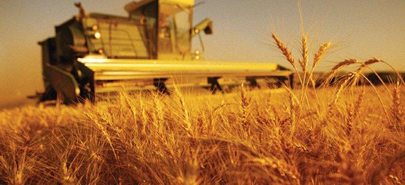 Ургац хураалт дуусч, 409.6 мянган тонн тариа хураажээ