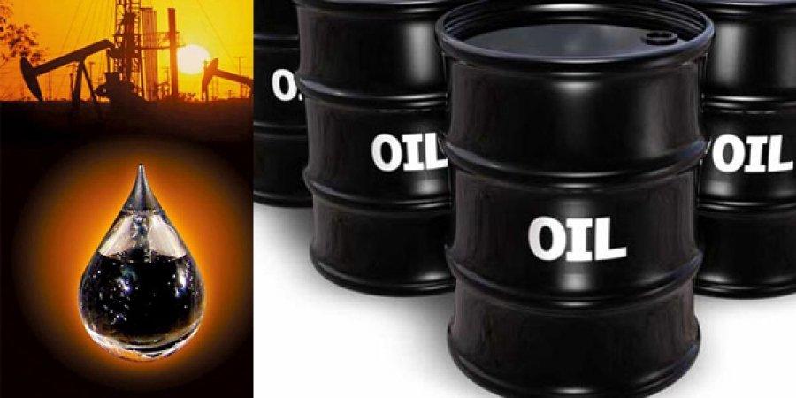 Нефтийн ханш нэг хувиар өсөхөд манай улсын ДНБ 0.1 хувиар буурдаг