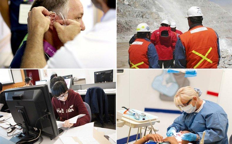 ИНФОГРАФИК: Монголд хамгийн олон хүн сурч, төгссөн TOP 10 мэргэжил