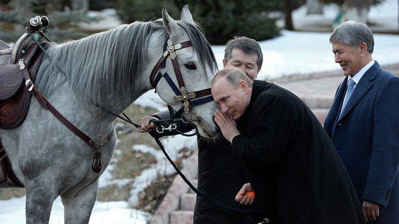 ФОТО: В.Путинд орловын хатирч морь, тайгын нохой бэлэглэжээ