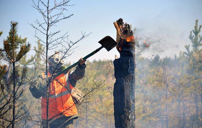 ФОТО: Сибирьт гарсан түймэр