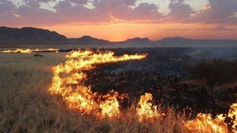 Дорнод аймгийн нутаг дэвсгэрт хээрийн түймэр гарч 3,290 га талбай шатжээ
