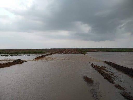 СЭРЭМЖЛҮҮЛЭГ: Арвайхээрийн замд усархаг бороо орж үер буужээ