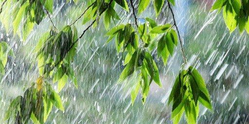 Ойрын өдрүүдэд дуу цахилгаантай аадар бороотой