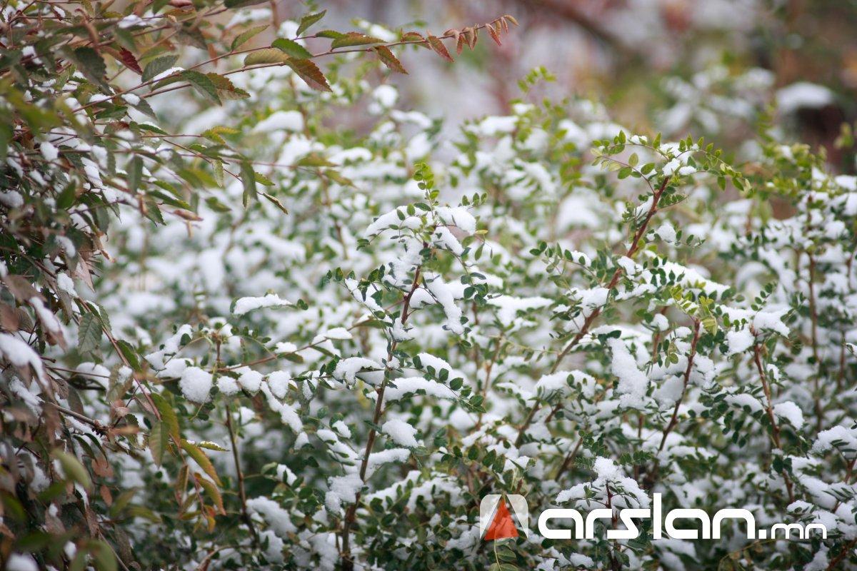 ЦАГ АГААР: Нойтон цас орж, ХҮЙТЭРНЭ