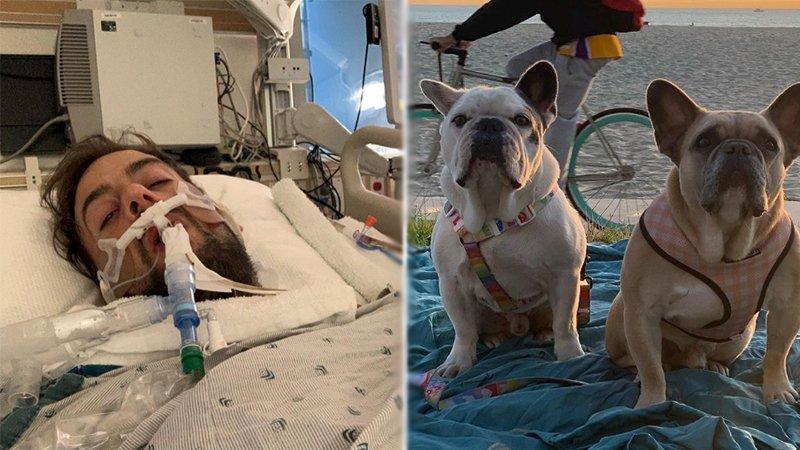 Лэди Гагагийн нохой салхилуулагч залуу уушгиа тайруулжээ