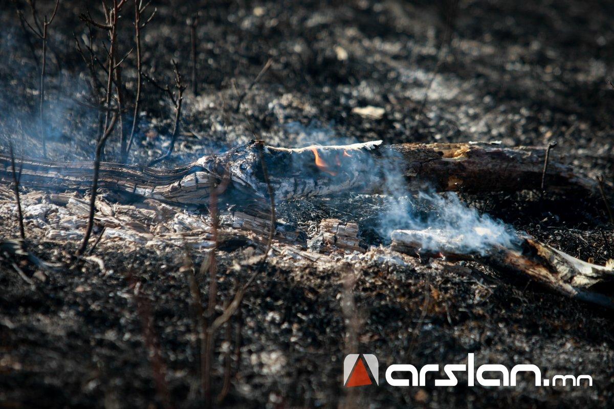 Он гарснаас хойш ой болон хээрийн нийт 283 мянган га талбай түймэрт өртжээ