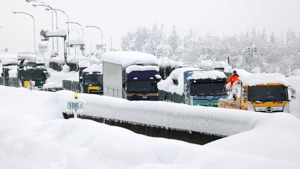 Японд их хэмжээний цас орсны улмаас түгжрэл үүсч, 500 гаруй нислэг цуцлагджээ