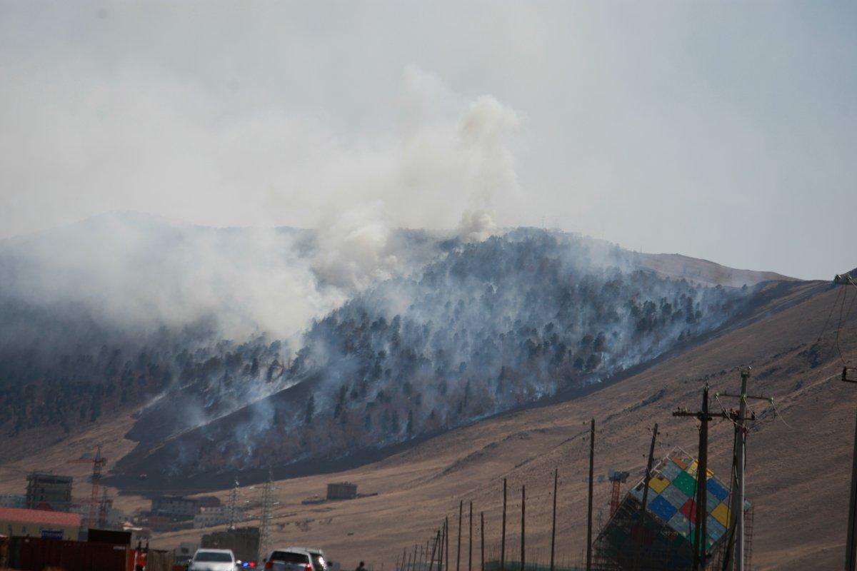 СЭРЭМЖЛҮҮЛЭГ: Зургаан аймгийн 11 суманд 13 удаагийн ой, хээрийн түймэр бүртгэгджээ
