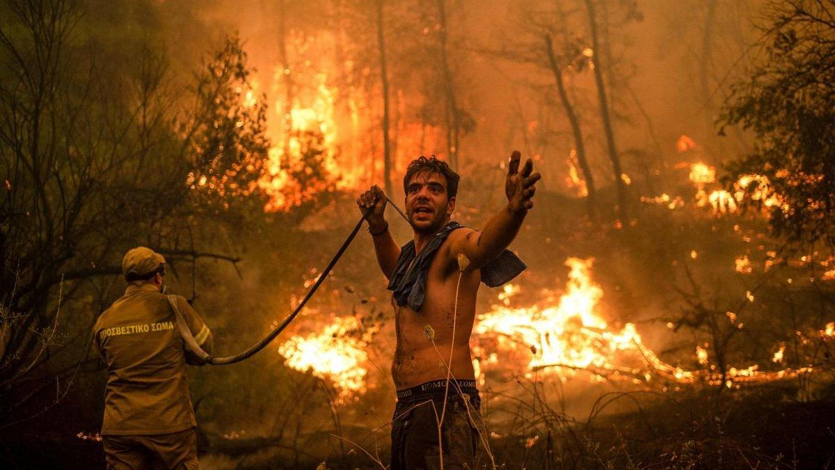 Алжирт дэгдсэн түймрийн улмаас 42 ХҮН нас баржээ
