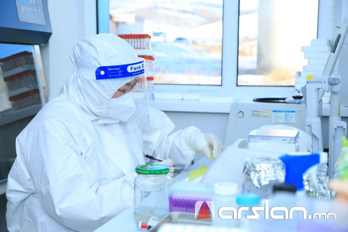 Нийслэлд 319, Баян-Өлгий аймагт 247 коронавирусийн халдвар бүртгэгдэж нийт таван хүн нас баржээ