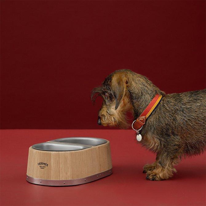 Hermès 1125 ам.долларын үнэтэй нохойны хоолны аяга гаргажээ