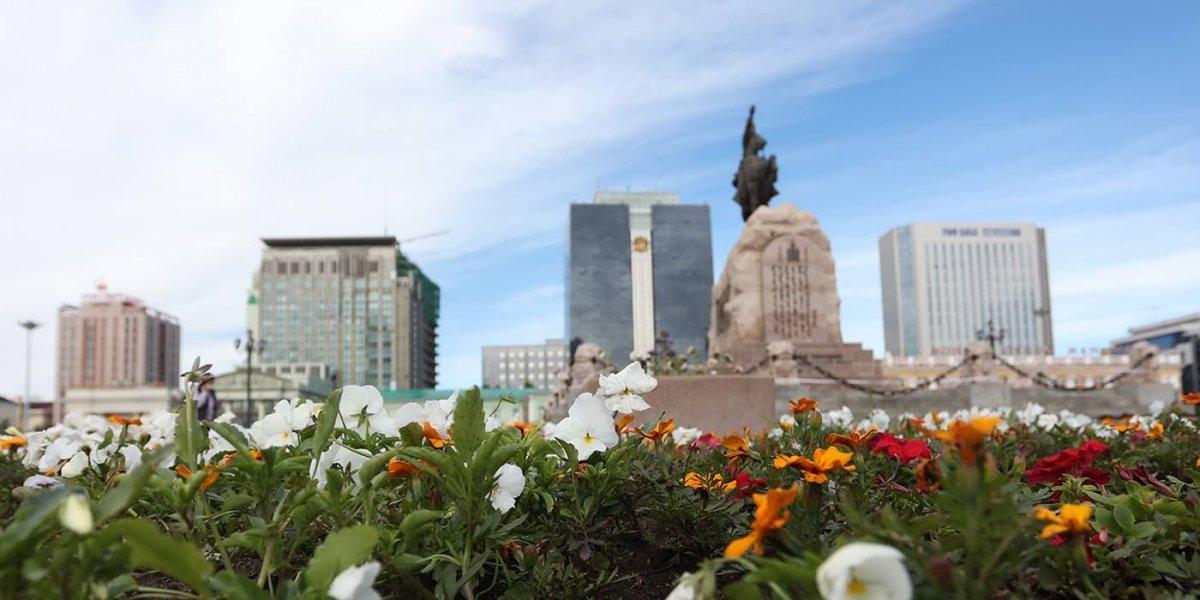 ФОТО: Улаанбаатар хотын 24 байршилд цэцэг суулгаж байна